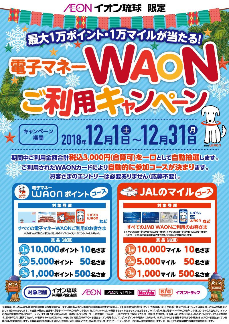 2018冬WAONご利用