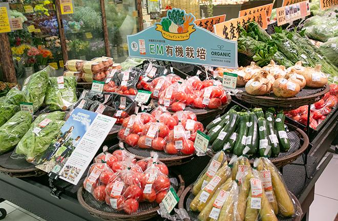 店頭に並ぶ野菜