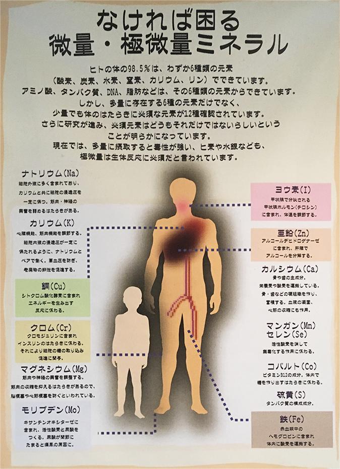 人の体に必要なミネラル