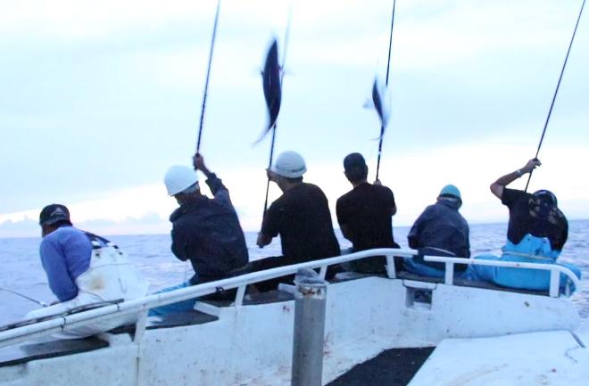 カツオを釣る漁師たち
